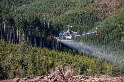 Western Helicopter applying herbicides on unit of land owned by Starker Forests.